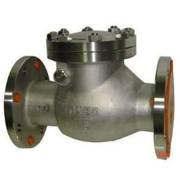 Stainless steel GB check valve